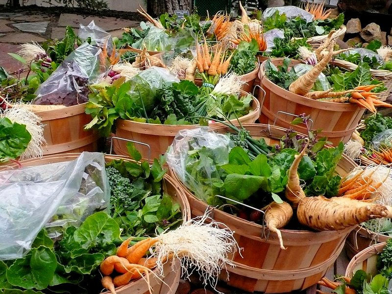 Csa Organic Food Delivery