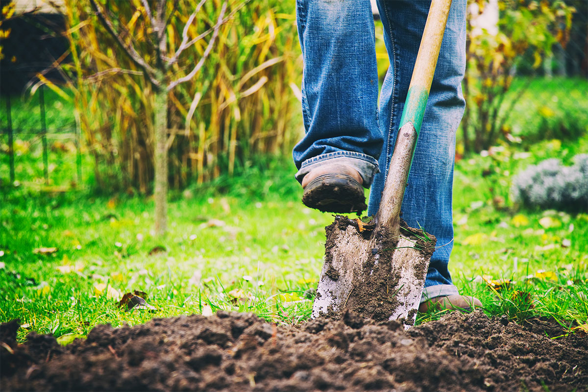 Farmer Digging Earth with Shovel