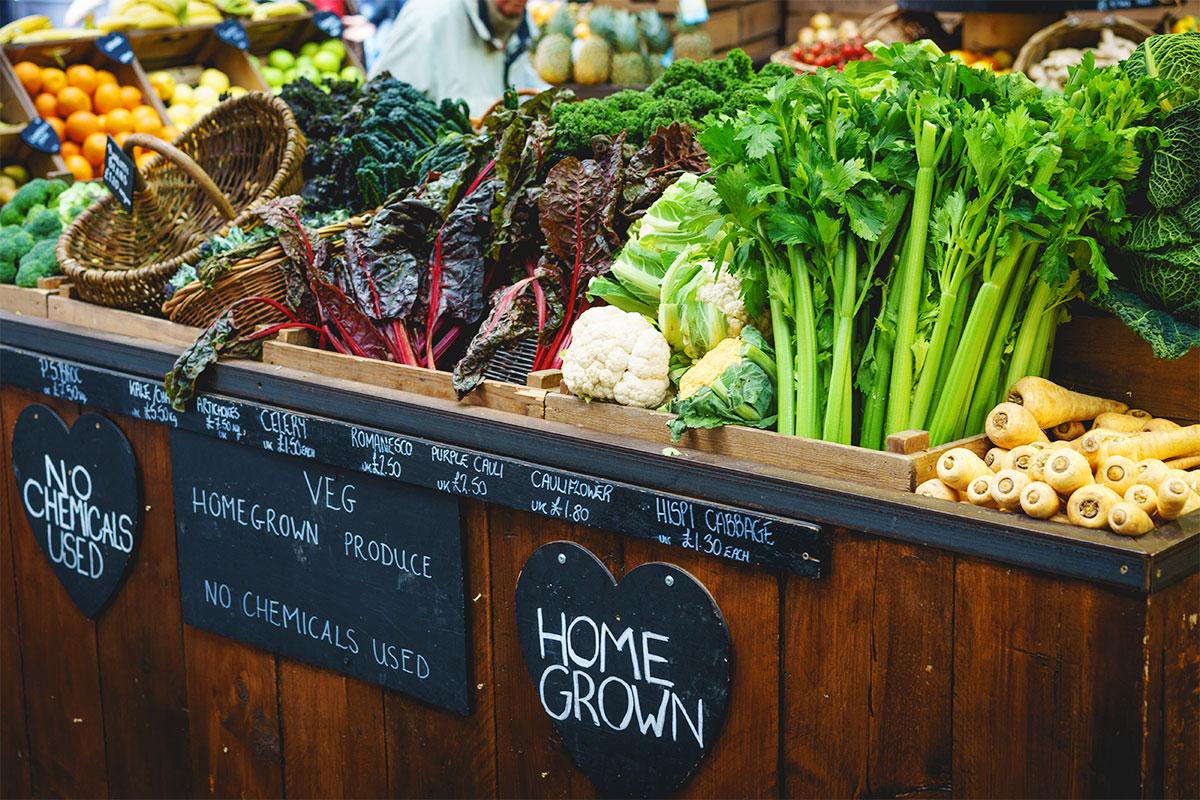 Farmers Market Fresh, Local, Organic Produce