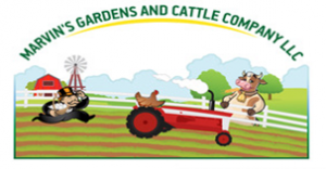 Marvin's Gardens and Cattle Company